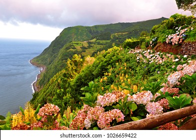 Breathtaking view with hydrangea flowers from the view point Miradouro da Ponta do Sossego at Nordeste on Sao Miguel island, Azores, Portugal