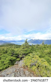 breathtaking view from Mount riley trail close to haines, Alaska