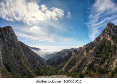 Angeles National Forest Images, Stock Photos & Vectors
