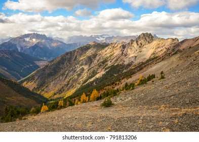 Brewer Creek Trail, British Columbia, Canada in Fall with Golden Larch. Purcell Mountain Landscape