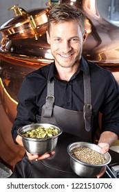 Brewer. Handsome man stands in front of a vat of beer holding ingredients of traditional beer hops and barley malt
