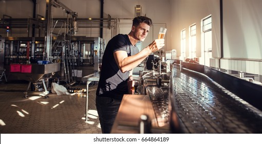 Brewery factory owner examining the quality of craft beer. Young man inspector working on alcohol manufacturing factory checking the beer.