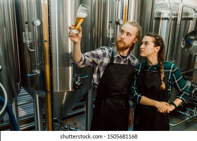 Brewery workers looking at freshly made beer in glass tube and discussing it. Male and female brewer testing beer at brewery factory. 4k. Small business concept.