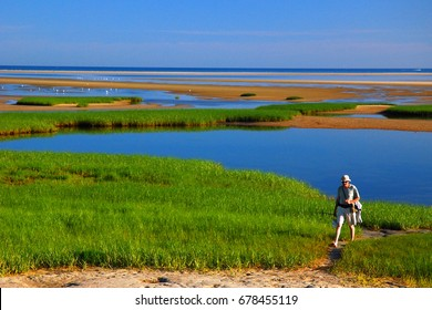 Brewster, MA, USA July 5, 2009 An adult man takes a nature hike through the salt marshes of Cape Cod in Paines Creek Park, Brewster, Massachusetts