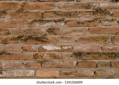 Brick Background or Texture