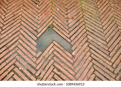 Brick floor with a puddle in a hole
