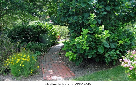 A brick garden path bordered by flowerbeds and shrubs