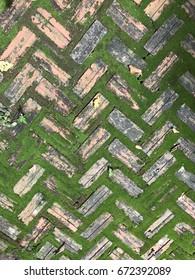 Brick with moss on floors
