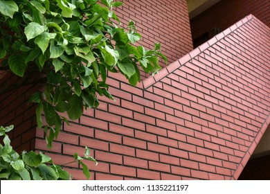 Brick outer wall