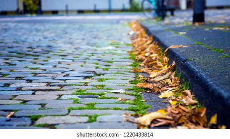 brick street and leaves in autumn
