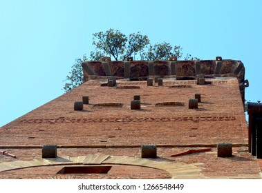 A brick tower, Lucca's Torre dei Guinigi is seen from below as it rises into a clear blue sky. Trees are growing on the roof.
