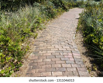 brick trail or path with green grasses and plants
