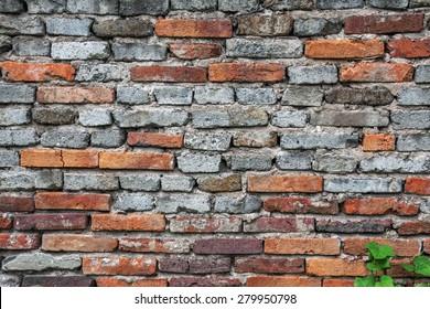 Brick wall background. Canon 5D Mk II.