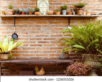 Brick wall garden. Wall shelf with small tree pots and garden tools. The old long chair in the garden. Cozy style decoration.