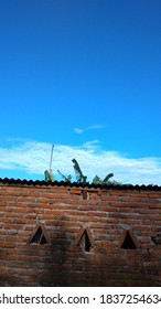 Brick wall isolated on clean bluesky