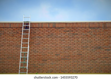 brick wall ladder business success