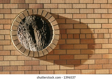 Brick wall with a portal looking onto a tree.  Tree is out of focus, brick wall tack sharp.  Metaphor for society boxing out natural things?