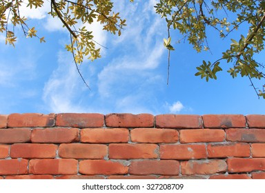 Brick wall and sky background with branches of dry leaves