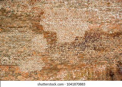 Brick wall, textura