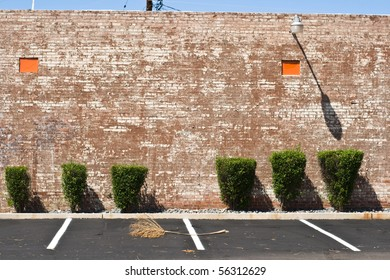 Brick wall, trimmed bushes, parking spaces and palm frond - an unusual composition.