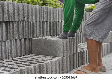 Bricks used in the construction