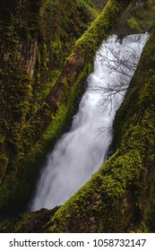 Bridal Veil Falls in Oregon part of the unaffected parts of the Columbia River Gorge after the wildfire in 2017 framed between moss covered tree limbs.