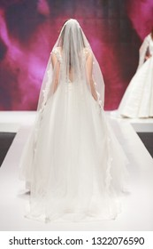 Bride in a beautiful wedding dress, from the back
