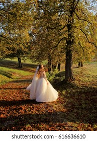 Bride dance at the sunset in autumn. Beauty sunlight, orange leaves and trees in happy wedding day