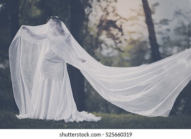 Bride Ghost in the woods more often at sunset, Halloween, Samhain