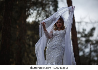 Bride Ghost in the woods  at sunset, Halloween, Samhain