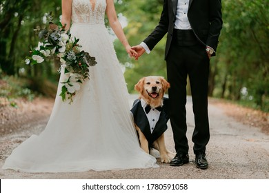 Bride, Groom and a cute dog dressed in suits with them