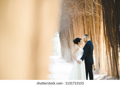 The bride and groom embracing and standing in the park