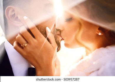 Bride and groom kisses tenderly in the shadow of a flying veil .beautiful pictures. guys enjoy. Sexy kissing stylish couple of lovers close up portrait