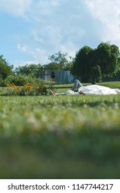 bride and groom laying on green grass and relaxing