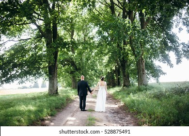 The bride and groom in the Park.A pair of newlyweds, the bride and groom at the wedding in the green forest nature kiss photo.Wedding Couple.Wedding walk