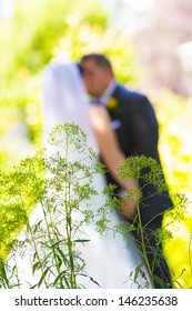 A bride and groom share a sweet moment with some plants in front of them and a shallow depth of field.