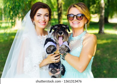 bride and her mother hold mini schnauzer on the hands. family portrait with pet