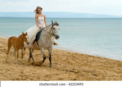 The bride and horses on a background of sea