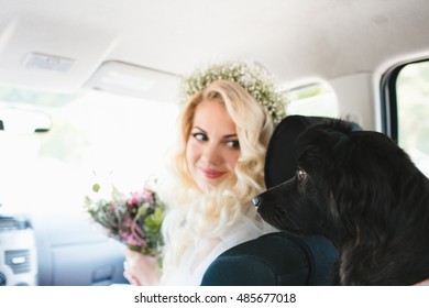 Bride looks at her dog and smiling