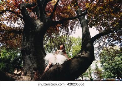 Bride sitting on a tree
