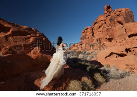 Bride Standing Wedding Dress On Red Stock Photo Edit Now 371716057