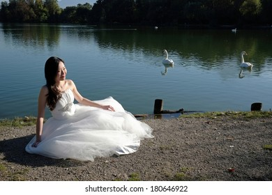 Bride and Swan