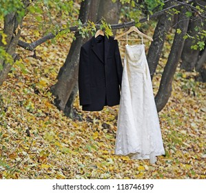 Bride white wedding dress and groom black suit hanging in a tree