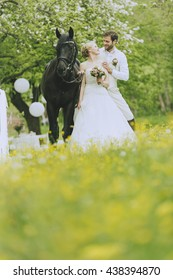 bride in white wedding dress and groom standing outside in the landschauft on a blooming meadow in front of blooming fruit trees. She snuggles up to a magnificent black horse