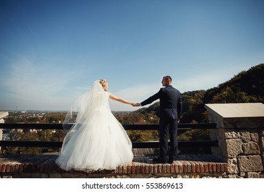 The brides hold hands on the bridge