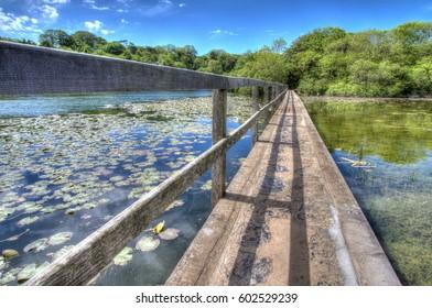 Bridge across the lilly filled Bosherton Lake