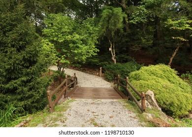 Bridge in a beautiful, lush park. Summer season.