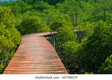 Bridge bright red trimmed with green leaves of the mangroves at Slack was beautiful and I set out to find a Lexus....