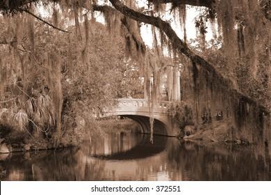 bridge in city park, new orleans