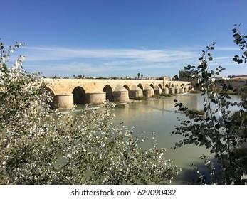Bridge in Cordoba